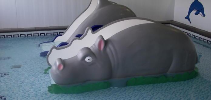 Mini Hippo & Dolphin Slides